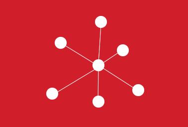 organisatienestructuur