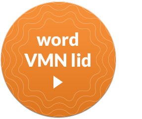 word-VMN-lid
